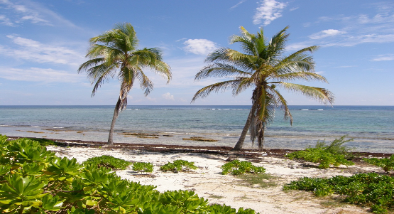 Bodden Town Real Estate for Sale