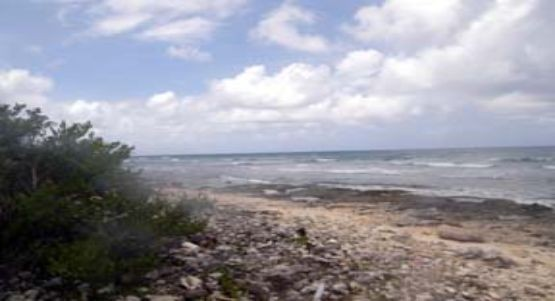Cayman Brac West Real Estate for Sale