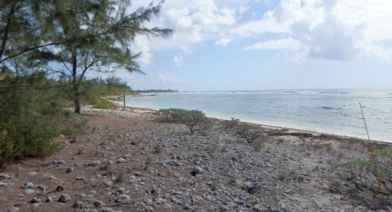 Little Cayman East Real Estate for Sale
