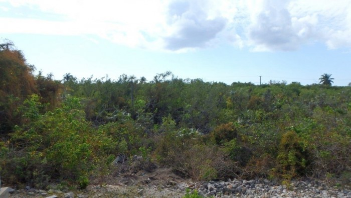 Little Cayman Property For Sale - Image 1
